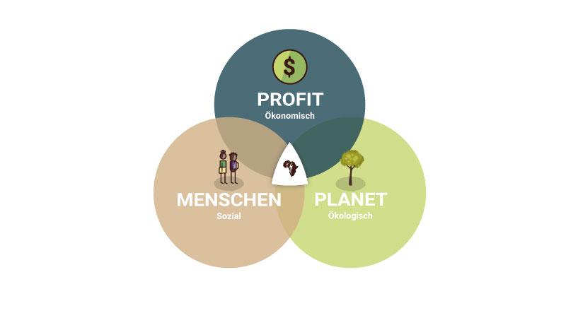 Ökonomisch, Ökologisch, Sozial